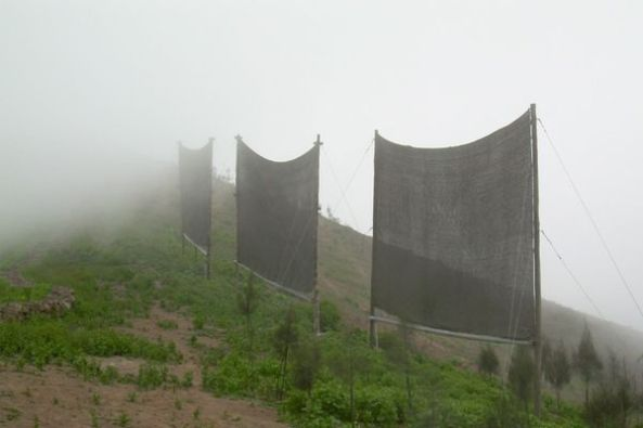 peru-fog-catchers_10142_600x450